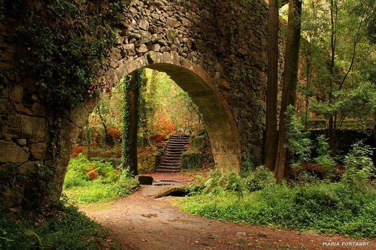 Visita al bosque encantado de ald n en pontevedra - Casitas en el bosque ...